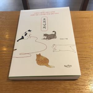 韓国書籍 かわいい猫たちがたくさん出てくるイラスト本「호찌냥찌」