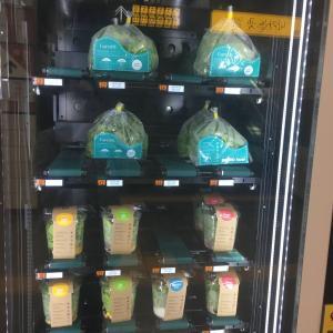 ウルチ路入口駅構内にある室内プラントとサラダ自販機