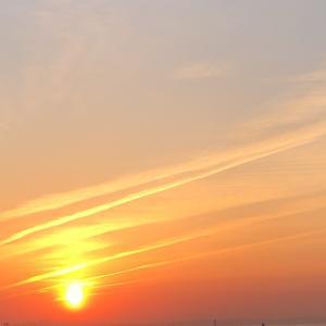 中止のお知らせ 大阪・堺市レイキ伝授ヒーリングサロン愛直(あいな)