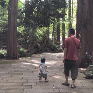 生田緑地に行ってきた【1歳3ヶ月】