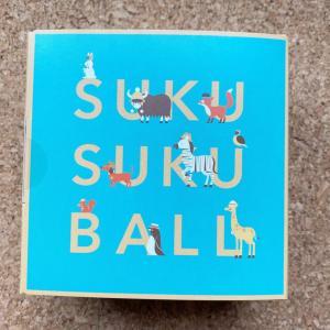 (PR)幼児むけ無添加おやつSUKUSUKU BALLをいただきました。【1歳11ヶ月】