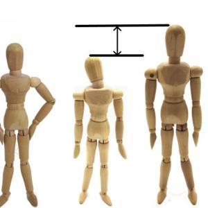 成長ホルモンの分泌不全が引き起こす低身長やバストの成長を阻害する悩みを解決