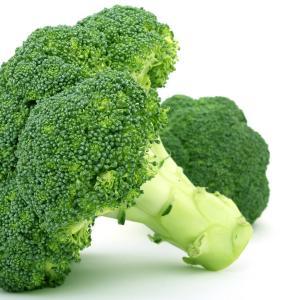 減量するならブロッコリーを食べよう