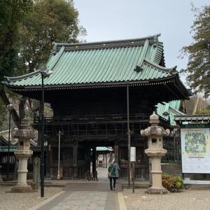 堀内 妙法寺。クリーンアップは場所だけではなく、自分自身も。185