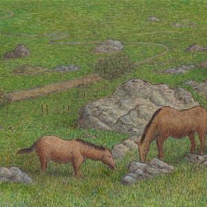 草を食む馬たち~グラサレマにて