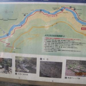 大血川遊歩道をハイキングしました!」