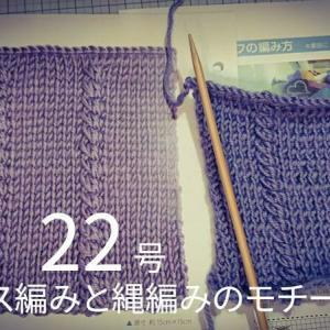 棒針あみ22号メリヤス編みと縄編みのモチーフ (間違え中)