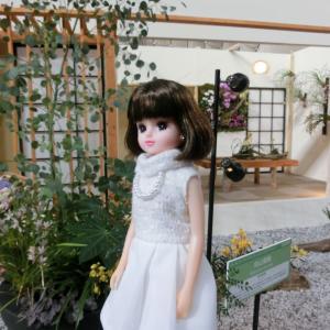 発売★立体刺しゅう12号 アシェット アネモネの花2
