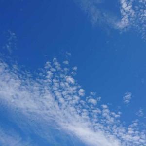 朝の通勤途中、空を見上げるのもいいもんだね~