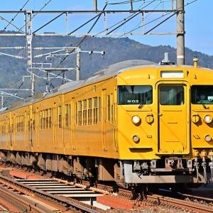 Feb.23,2020 115系電車(カラシ色)