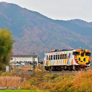 Nov.24,2019 キハ40系気動車「山口市(レノファ山口FC)PRラッピング列車」