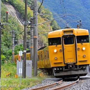 Sept.2,2020 113系(岡オカ B-16編成)