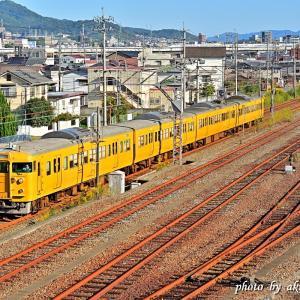 Oct.25,2020 115系電車(カラシ色)