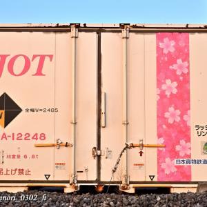 Jan.16,2021 JOT桜帯コンテナほか(防府貨物オフレールステーション)