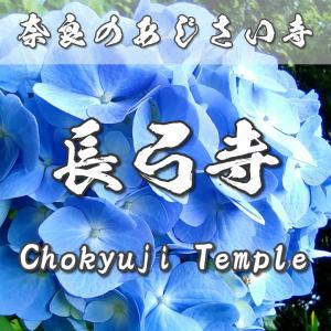 奈良のあじさい寺「長弓寺」