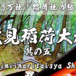 伏見稲荷大社の見どころ5~「お山」しよう!根上りの松・神様の歓迎サイン~