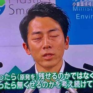 【進次郎】除染土の再利用地、野菜の試験栽培開始