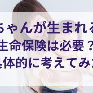 【生命保険編】赤ちゃんが生まれる!保険は必要?保障額は?具体的に検討してみた(死亡保障)