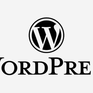 ワードプレスニュース|WordPress5.3アプデ後AFFINGERで発生しているバグ