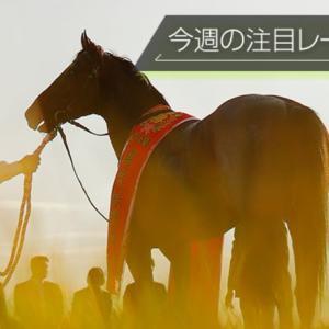 東京新聞杯/きさらぎ賞の新サイン