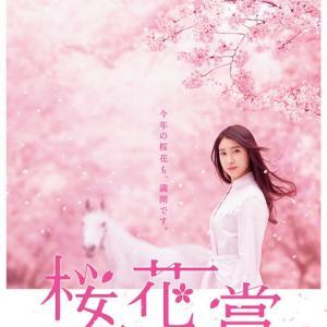 桜花賞のポスター解読 ポイントは満開