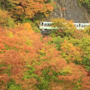 錦を纏う      (会津鉄道)