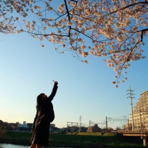 柳瀬川の輝き   (東武東上線)