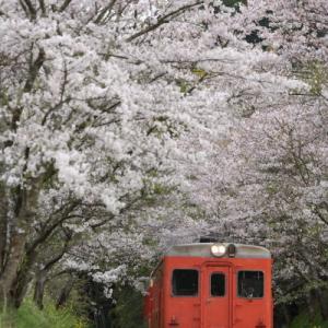 西畑切通      (いすみ鉄道)