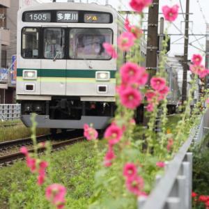 東急のほう      (東急多摩川線)