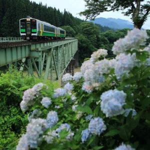第二鉄橋とアジサイ      (只見線)