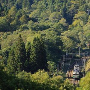 高原も まだ緑の中で     (しなの鉄道)