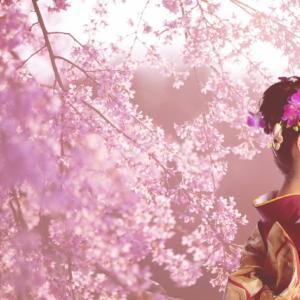 【必見】出会い成功させるには?花見の季節がもう少しで来る予感