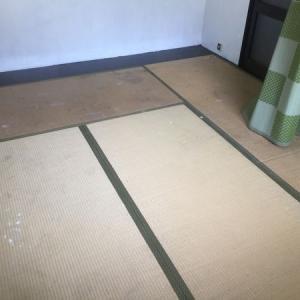 激綺麗!畳を簡単綺麗にする方法しかも1万円以下の激安でする方法