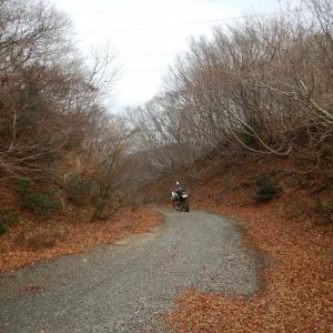 マキノ黒河林道 2019年12月