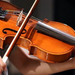声を「弦楽器」に例えて考えると「何から始めれば良いか」が見えてくる