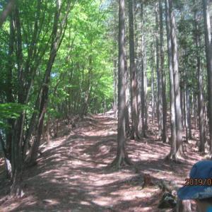 ヘリポートから三峰神社へハイキング