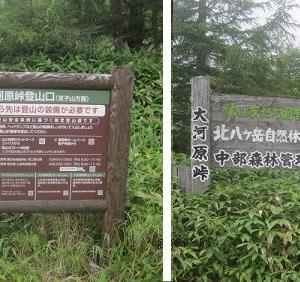双子山・双子池・亀甲池ハイキング