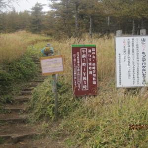 見晴歩道から三方ヶ峰・池ノ平湿原ハイク