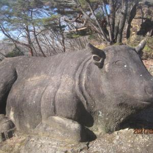 吉井 牛伏山自然公園