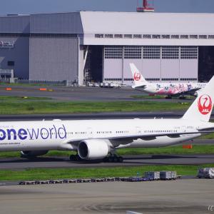 〔特集〕約170機中6機の特別塗装!JALのワンワールド塗装機~航空連合、ワンワールドとは?