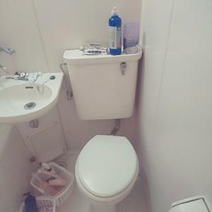 トイレ掃除をトイレ行く度にサササとするルーティン