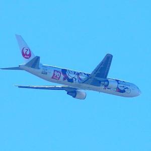 【航空機】ミッキーマウスのJAL機を発見!