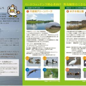 【野鳥】マガモ・マガン・ハイタカ(宍道湖第7弾)
