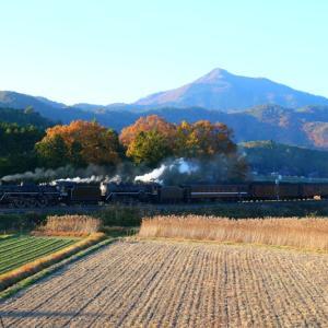 【鉄道写真】夕日のSL重連