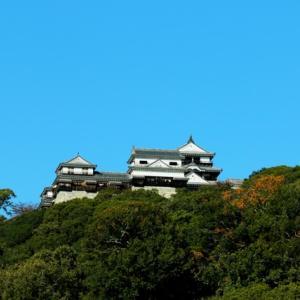 【風景写真】松山城とその市街