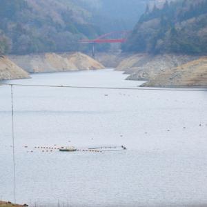 菅野ダム水位(2月10日)が心配です。