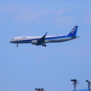 【航空機】岩国錦帯橋空港へ到着ANA635便