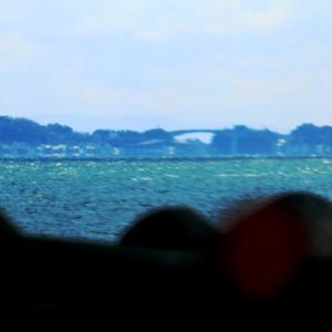 上関へ河津桜を見に行く道案内