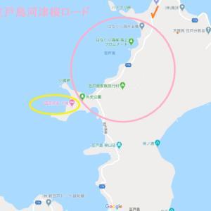 笠戸島の河津桜が見頃です♪~