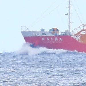 【船舶】液化ガス運搬船が伊予灘を走る!